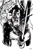 Lone Wolf And Cub by shinkusuarez88