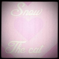 Snow the cat by MCSarts