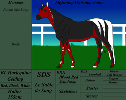 LWs: SDS Sable by kagetora4ever