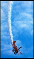 Wales National Airshow 2011 by fatdeeman