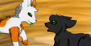 Hollyleaf MEP Part 18 for Wolftacoz by DizzleDeeX