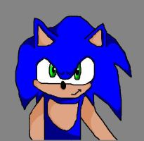 Sonic The Hedgehog by RouxWolf