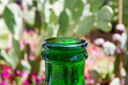 Surface Tension on a bottle by albeseba