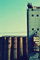 Old Abandoned Grain Mill by alektheplatypus