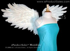 Meridian Feather Angel Wings by eProductSales
