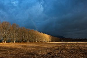 Ray of light by carlosthe