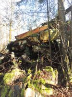 Car Graveyard Forest~ 2/15/2015~3 by Mathayis