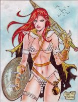 Red Sonja (#14) by Rodel Martin by VMIFerrari