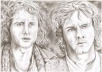 Brandybuck and Took by Fae-T