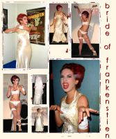 the bride of frankenstien by pirate-dolly