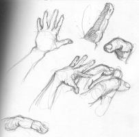 Hand Study 2 by mrcontroversial
