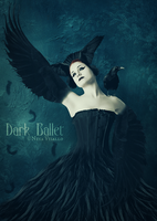 Dark Ballet by NinaVisallo