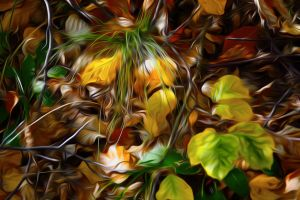Autumn Mask by Ruannes