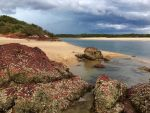 Red Rock Estuary by Bjay70