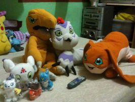 My Digimon Plushies by davyjonesentei123