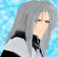 Sephiroth by Erkillers