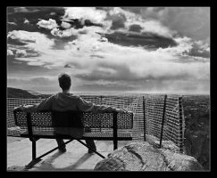 Restricted View by Shamas