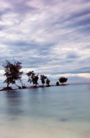 Calm water by FirstMeasure