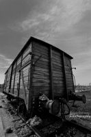 Auschwitz Train by Unpropitious