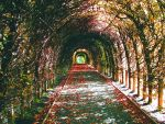 Tunnel by ohheyroman