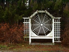spider web bench 2 - wide by JensStockCollection