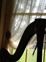 Harp by the Window by ButterflyRitsuka