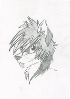 Maron the Husky sketch 1 by OmegaTheDragon