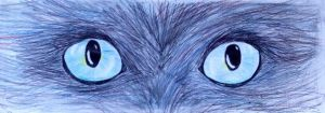 Cat eyes blue version by Petitmonstremagique