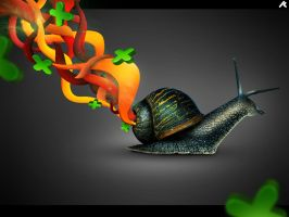 Secrets of an Old Snail by r-fl