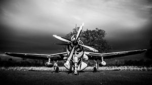 Fairey Gannet by amipal