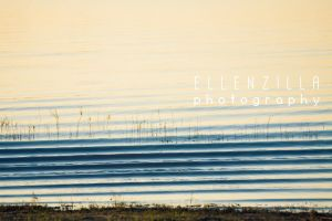 a boat's wake makes for pretty lines by ellenzilla