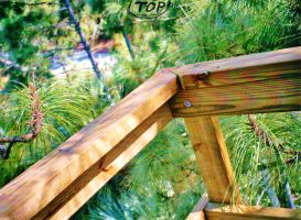 Our Treehouse Built by My Husband {Photo 13} by Empress-XZarrethTKon