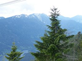Grouse Mountain 3 by mredhawk