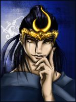 another DW5 Sima Yi by dynastywarriors