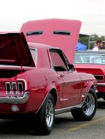 Red Pony by Boss429