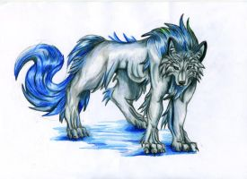 sea wolf by VioletMinim