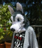 first fursuit 3 by rz250