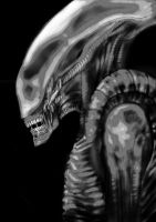 Alien by mihals