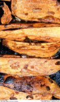 More Fried Sweet Potatoes by Angelrat-Stock