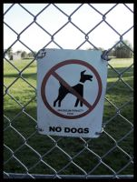 No Dogs by 12memories