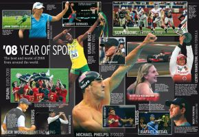 2008_Year_in_sport by space-for-thought
