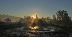 On golden pond by lucium55