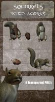 3D Squirrels by zememz