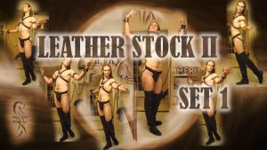 Leather Stock II - set 01 by disscordia