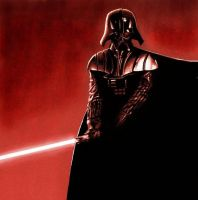 Darth vader 2 by sphodromantis