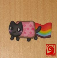 Nyan cat first try by Luna-cuteXD