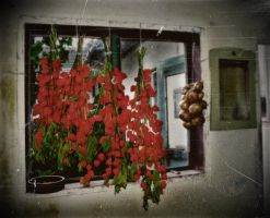 An ordinary country life 1 by Andenne