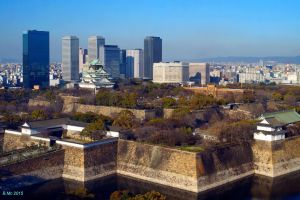Osaka Castle by Ancharite