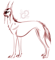 Galgo Castellano: Concept Sketch by PaintedCricket
