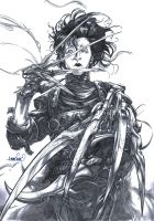 Edward Scissorhands (pencils) by emmshin